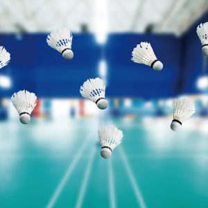 gallitos de badminton